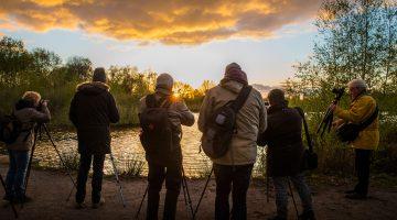 Fotografeer de Peel in de ochtend of in het donker